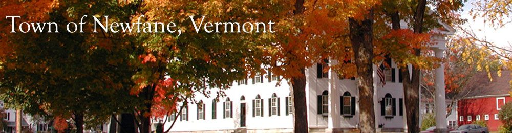 Official Website for the Town of Newfane, Vermont